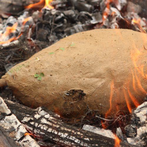 Huhn im Lehmmantel - Kochen mit Naturmaterialien