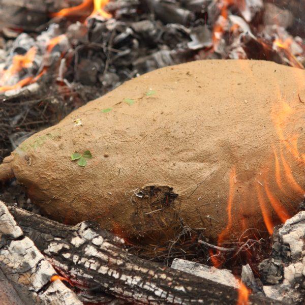 Huhn im Lehmmantel – Kochen mit Naturmaterialien